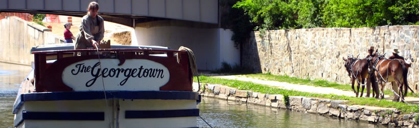 C & O Canal Boat and Mules